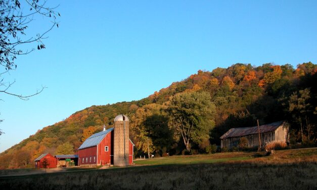 Scenic Fall Colors In The Driftless Region of Wisconsin