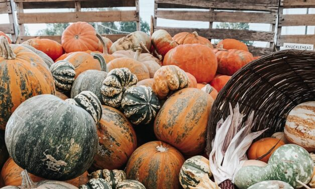 Best Fall Events In the Willamette River Valley
