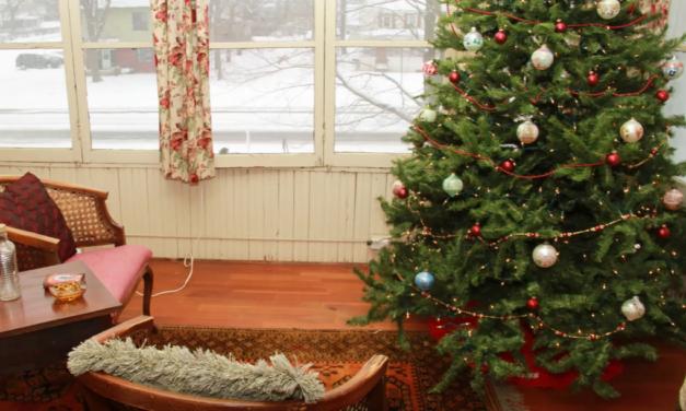 Holiday Season Christmas Tours in Little Falls, Minnesota!