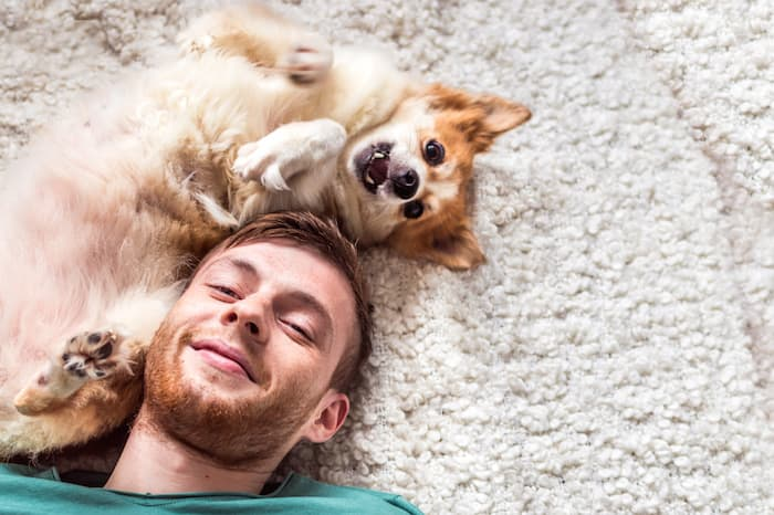 Dog with its Human