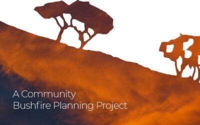 Skenes Creek Bushfire Behaviour