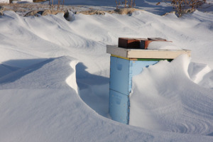 Drifts at the Hive