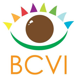 Belize Council for the Visually Impaired