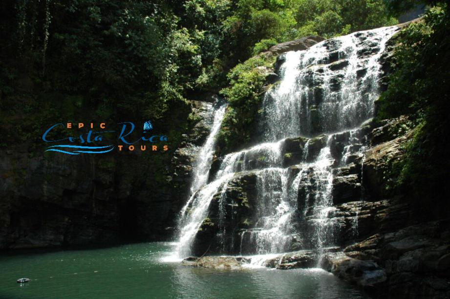 nauyaca waterfall costa rica tours home