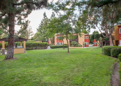 Grassy courtyard with trees