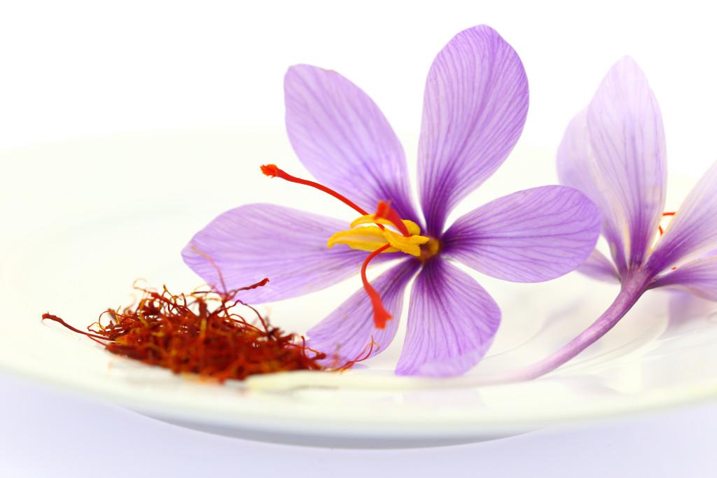 Flor do Açafrão - Açafrão em Estigma