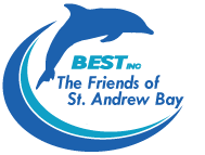 Friends of St. Andrew Bay