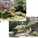 shrub trimming southern maine