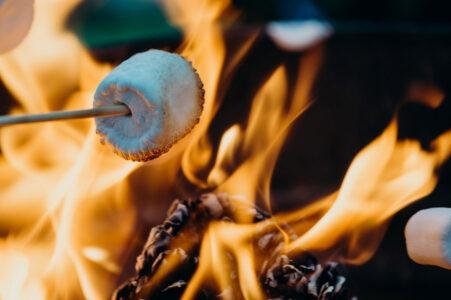 marshmallow roasting on fire