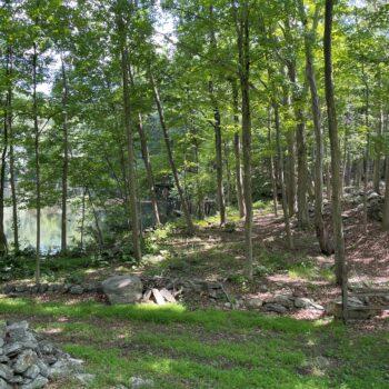 Jim Todd Land pond along MRR