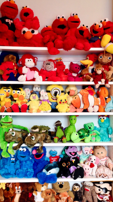 Rainbow Organized Stuffed Animals - Jeffrey Phillip