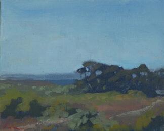 Eucalyptus Grove, Molera, Big Sur by Erin Lee Gafill