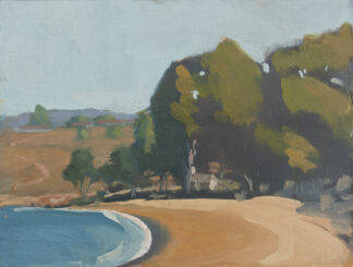 Eucalyptus Stand at Molera Beach by Erin Lee Gafill