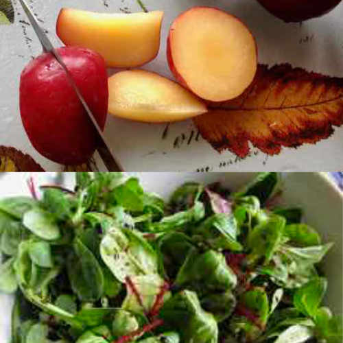 Fruit and Vegetables in Spanish