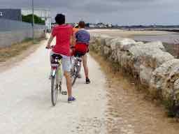 I like cycling in French - J'aime le cyclisme