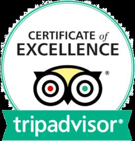 Trip Advisor Certificate of Excellence-min crop