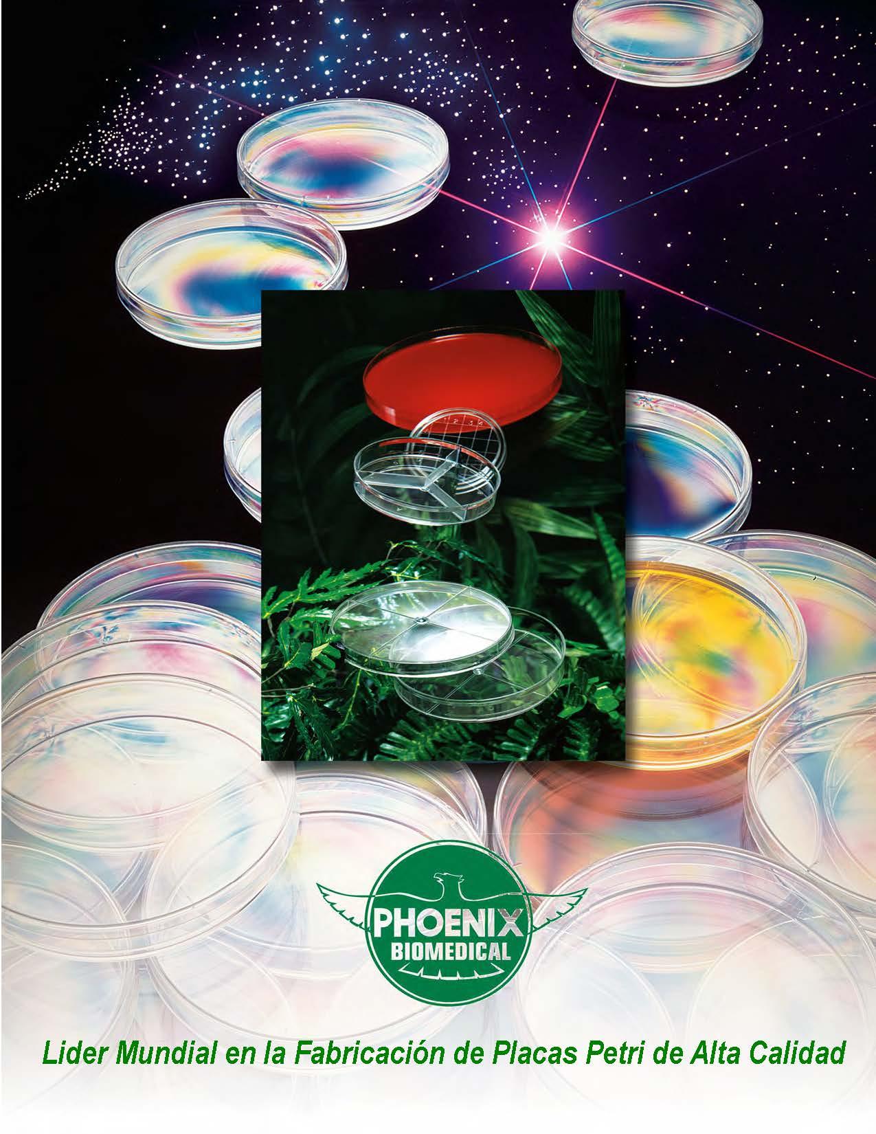 Phoenix Brochure (Spanish)