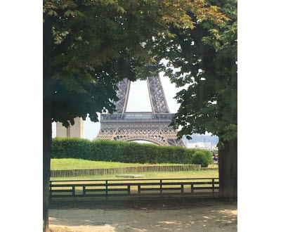 Eiffel tower, viewed from a park. Photo courtesy of P.S.