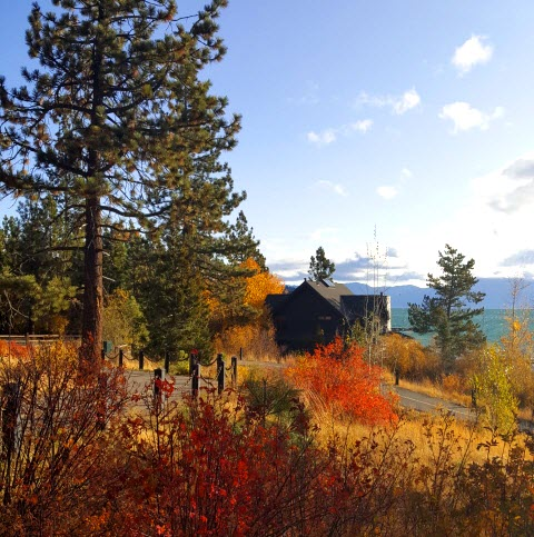 Autumn colors on the shores of Lake Tahoe