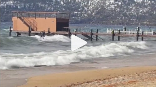 Tahoe Surfer
