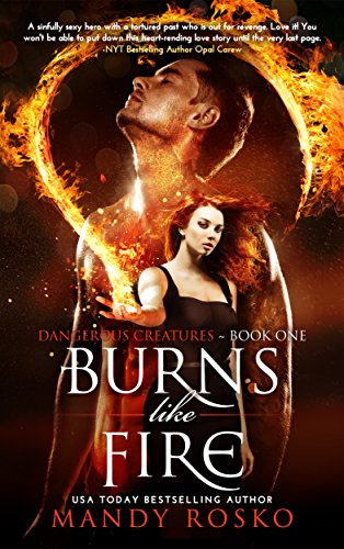 Book Cover: Burns Like Fire