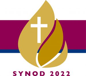 Synod Small Groups