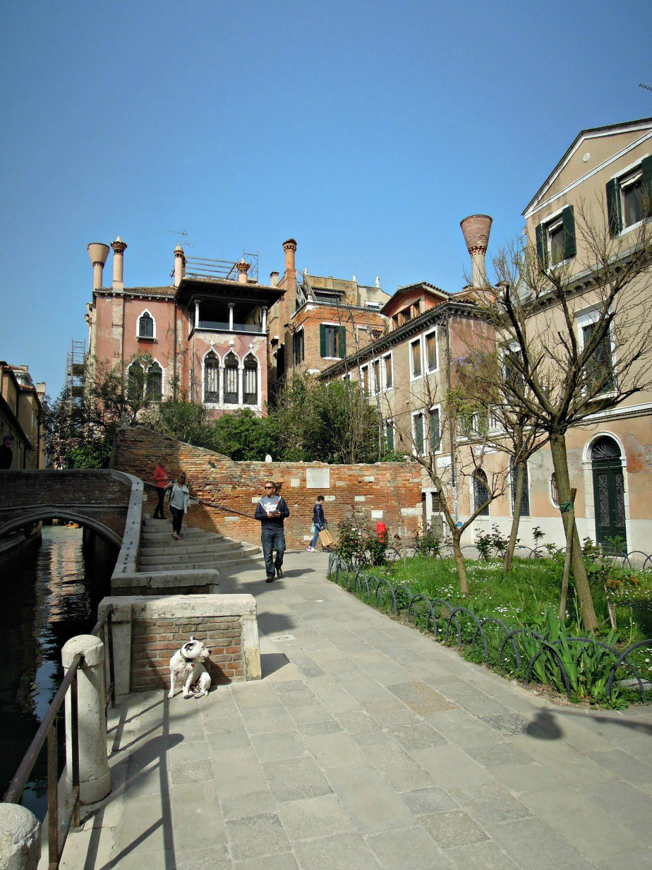 Dog Just Waiting by the Canal in the Sun in Dorsoduro Venice Italy
