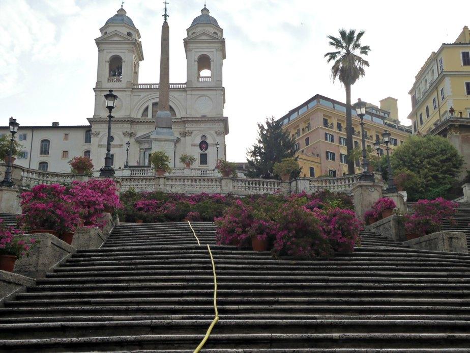 Azaleas on the Spanish Steps