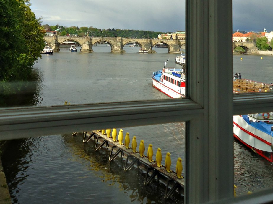Looking out from Kampa Museum Prague