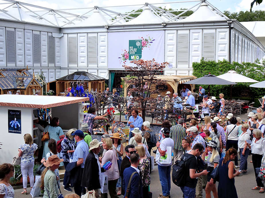 Crowds Gathering at the Chelsea Flower Show