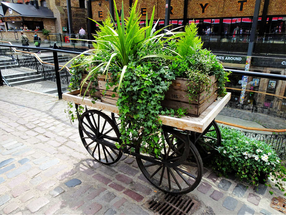Plant Cart at Camden Market
