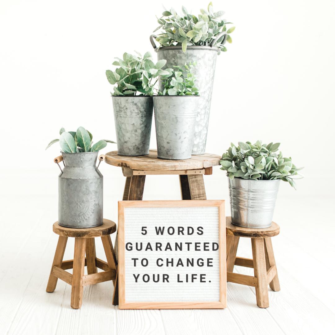 5 Words Guaranteed to change you life.