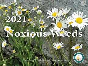 2021 Noxious Weeds Calendar Cover Photo