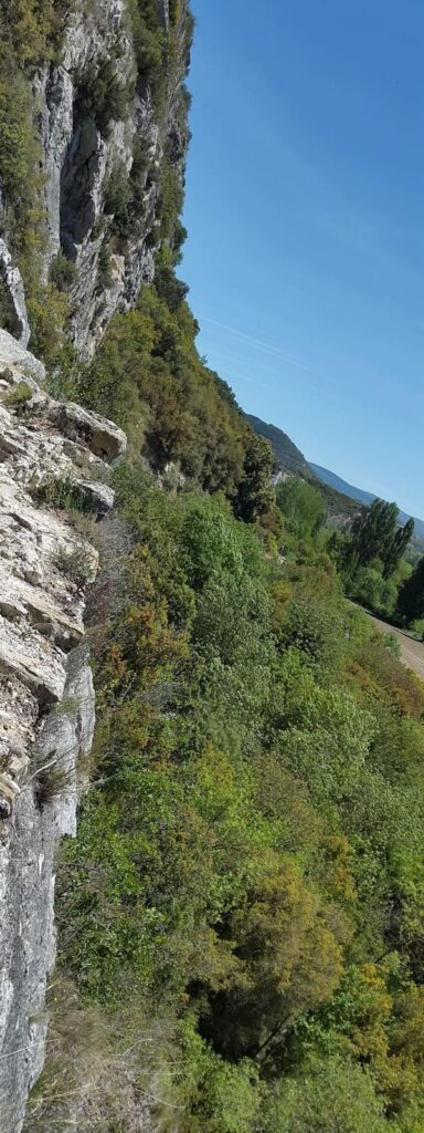 Natural Reserve Foz de Lumbier