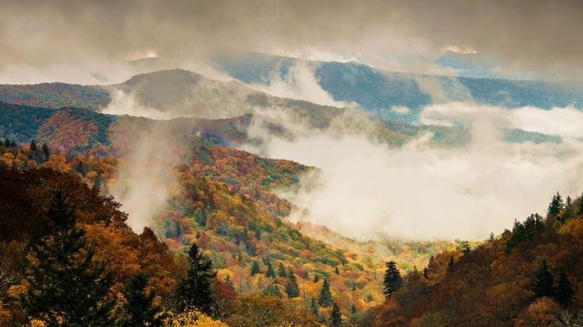 Great Smoky Mountains 2021:The most popular National Park in the US Water and the exudation of trees create that kind of fog that gives its name to the most popular mountains in the United States. The Smoky Mountains National Park is the most visited in the country, with eleven million tourists