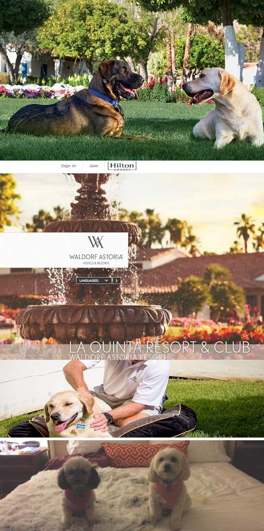 La Quinta resort pet Hotel - And how do you travel with Pets? - Traveling the world with a dog