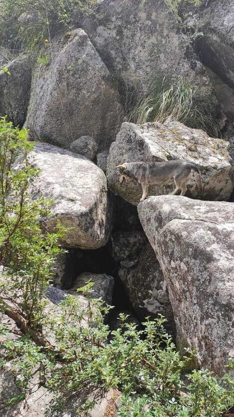 One of the entrance to the Underground River - wank Hill la cumbrecita