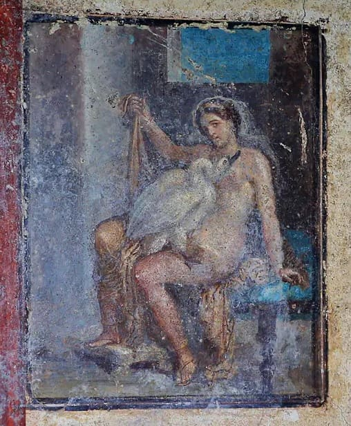 Leda and the Swan in Pompeii - Leda and the Swan in Pompeii City A group of archaeologists work in the Pompeii archaeological park in southern Italy. There was a spectacular erotic fresco in very good condition. It is the Greek myth of seduction, embodied in Leda and the swan. It is a unique and exceptional find, said the director of the #archaeological park, Massimo Osanna, when announcing the discover #pompeii #eroticy.