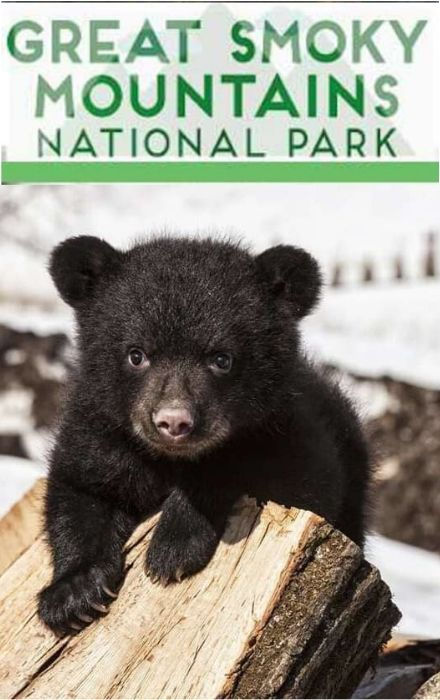 Smoky Mountains - US National Parks 2021
