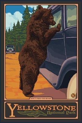 Yogi Bear at Yellowstone National Park