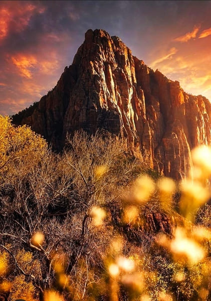 Zion National Park - USA Visiting #Zion #National_Park is one of the best experiences when traveling on the west coast. Park admission is $ 35 per car and is valid for one week. We can also make use of our Annual Pass. It is a pass valid for 12 months with which we can enter all the National Parks of the #USA #Hiking #outdoor