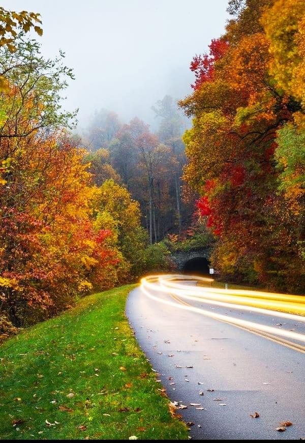 Blue Ridge Parkway 2021: Traversing the Appalachians - Landscape