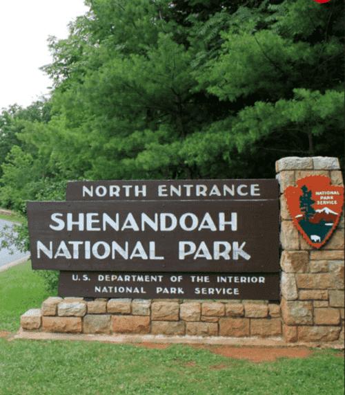 Shenandoah National Park 2021