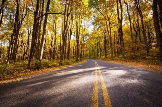 Fall Colors on Shenandoah National Park