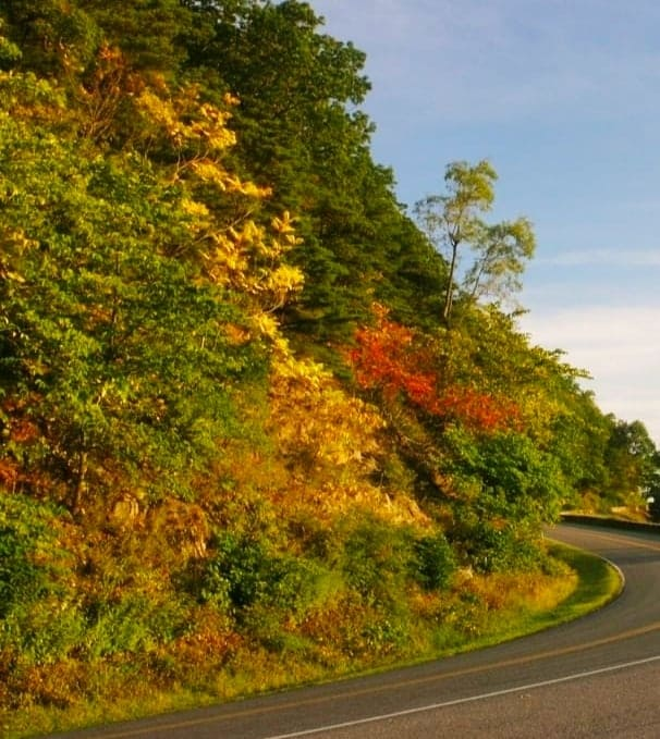 Fall Colors on Shenandoah National Park -#Fall #Colors on #Shenandoah National Park Shenandoah #National_Park: Just 75 miles outside of #Washington DC is a peaceful and quiet national park. It has huge #mountains, majestic forests, and breathtaking views. #hiking #outdoor #photo #Photography #USA #love #vacationy
