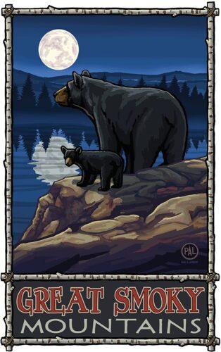 Northwest Art Mall Great Smoky Mountains Black Bear in Moonlight North Carolina Wall Art by Paul A Lanquist,