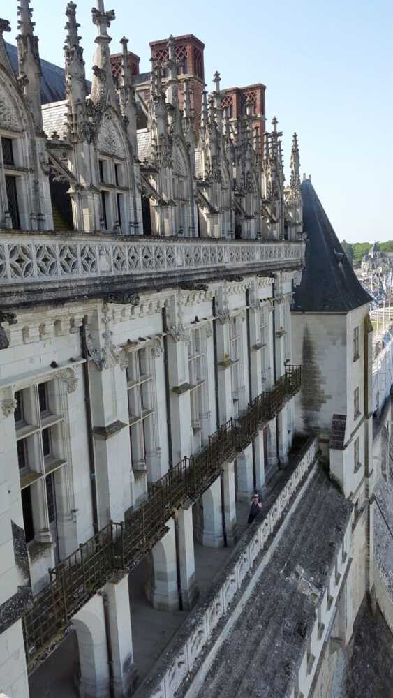 The Royal Castle of Amboise (Château Royal d'Amboise) is located on top of a hill, overlooking the Loire and the medieval city, and has imposing walls.