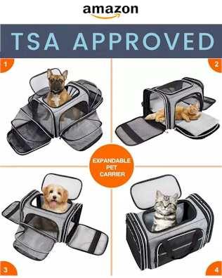 TSA Approved Pet Carrier 2021