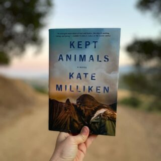 In just one week, we are out with the old (but oh so gorgeous) hardback of KEPT ANIMALS and in with the (➡️) new totally inticing paperback! I am so grateful to @jayam66 and @tristanoffit for their work on each of these incredible covers. Publishing my debut novel has been a wilder journey than I ever could have imagined (👋very-last-minute-2020-zoom-book-tour) and one of the most gratifying parts has been to witness their visual interpretations of the story. It's an incredible art form, being able to signal to readers the essence of a book with ONE glance! 👀🏆 We went through just a few iterations with the hardback, but as soon as I opened the version you see here I started weeping; because I knew that girl, that horse, their connection, the landscape behind that is both inviting and ominous. If you've read KEPT, I know you know exactly what I mean. And now this striking paperback, the beach-read ready edition 🏝! This cover so perfectly articulates the edge of your seat/pool feeling I wanted KEPT to have and it instantly made me think of a David Hockney painting: sooo California!! I was sent a few designs, but everyone agreed this one was exactly right. It is both Vivian Price and Rory's gaze. It is both individual desire and external constraints. It holds seduction and foreboding all at once. It is, I think, EXQUISITE. Thank you, Tristan & Jaya! And thank you to my entire team at @scribnerbooks (@zoeyzozozoeyzozo @valeriesteiker @kewatson and @we_were_here 💓) for believing in KEPT as you do, for steering it (and me) through that insane launch year, and bringing us into 2021 with brand new sparkle✨😎! I'm forever grateful.   Dearest Friends, a writer does not do this alone…Would you please  help me support everyone who has/is supporting KEPT by reviewing it, recommending it to your friends, librarians, your book club buddies, share this post, and let's rock this PB release like it's 2019! She hits the water on August 3rd!! 💦👙💦 But feel free to pre-order now, of course