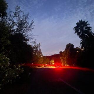 The drama of a late night walk